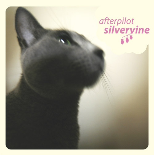 afterpilot silvervine